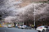 서울경마공원