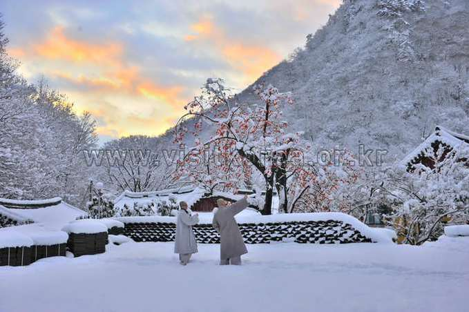 Snowscape of Naejangsa Temple