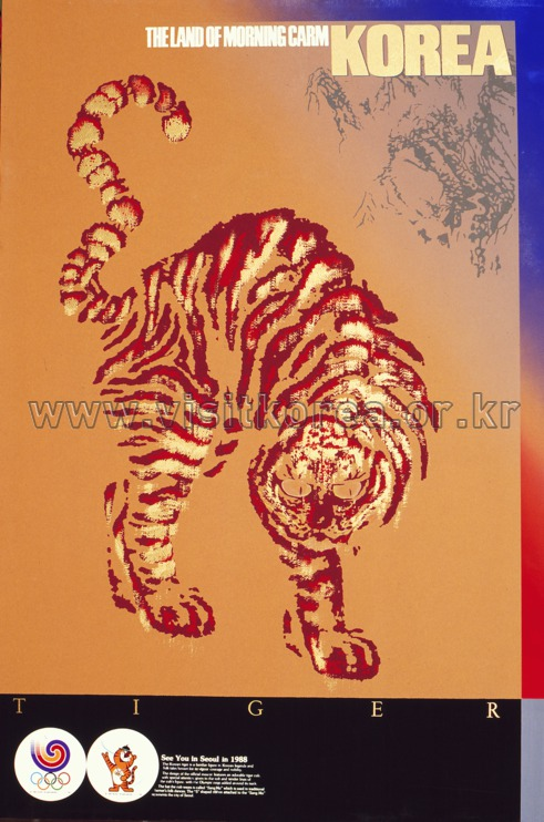 Korean Tiger