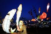 Inje Icefish Festival