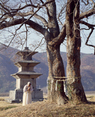 Three-story Stone Pagodas at the Gameunsa Temple Site