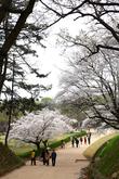 Banwolseong Fo..
