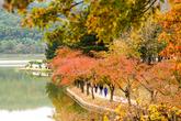 Gyeongju Bomun Tourist Complex