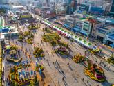 2019 마산 국화축제