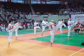 KYONGGI INTERNATIONAL OPEN TAEKWONDO CHAMPIONSHIPS