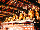 Buddha Statues 