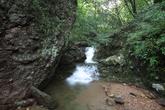Yuchi Natural Recreation Forest