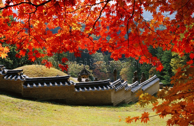 Autumn of Gwangneung