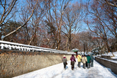 창덕궁 후원 겨울