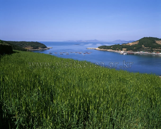 Cheongsandohang Port
