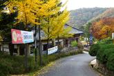 Gyeongju Folk Arts Village