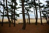 Janggok Beach