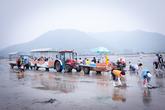 Hajeon Village Mud Flat Experience Place