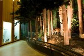 Forest Museum ..