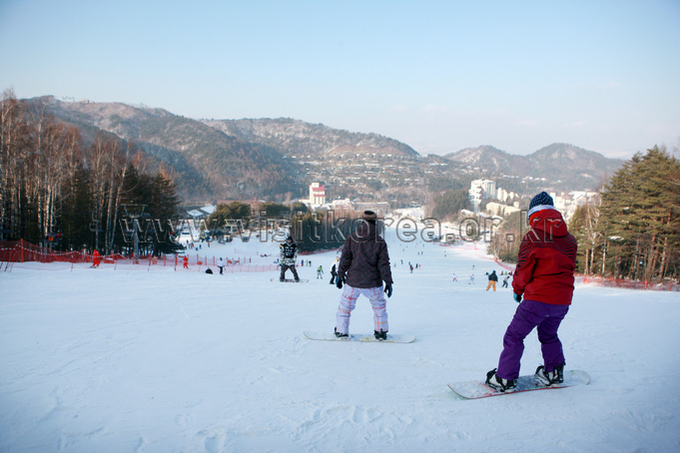 Yongpyeong Resort, Ski 
