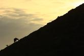 Mt.Songaksan