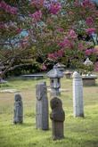 Suncheon City Deep rooted Tree Museum