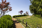Daedong Sky Park