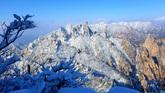 Snow Scenery of Gongnyong Ridge