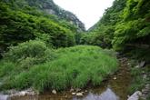 Gangcheonsan Country Park