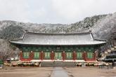 Geumsansa Temple