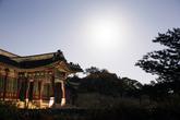 Moonlight Tour At Changdeokgung Palace