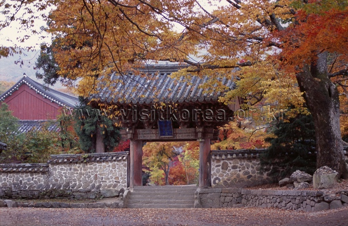 Autumn of Songgwangsa Temple