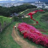 Gochangseong Fortress