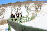 Daegwallyeong Yangdde Farm