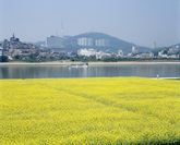 Hangang River Citizen Park