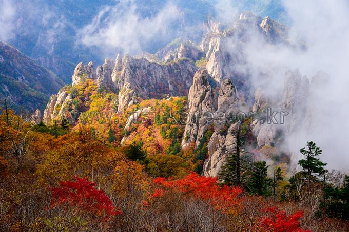 Autumn of Yongajangseong Ridge