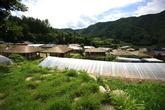 Juchon Folk Village