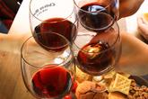 와인인삼트레인
