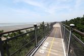 Janghang Skywalk