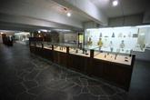 Moga Museum of Buddhist Art