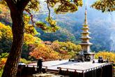 Cozy Cheongnyangsa Temple Pagoda