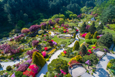 The Garden of Morning Calm