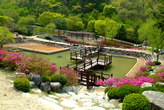 대아수목원