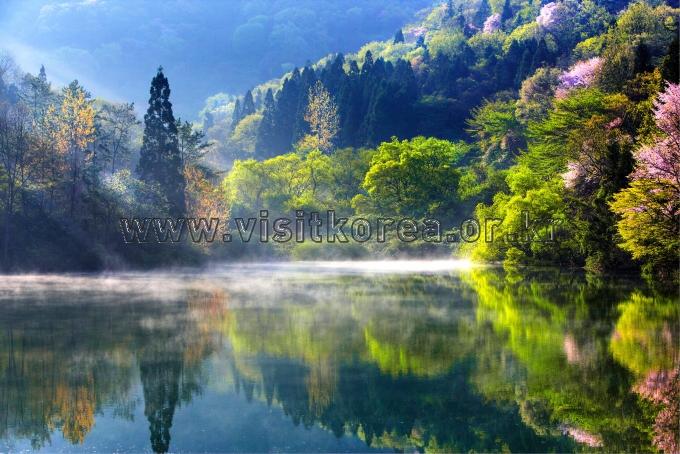 Spring in Seryangji Reservoir