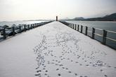 Gonghyeonjinhang Port