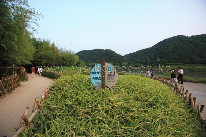 태화강대공원