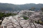 서울대공원_과천