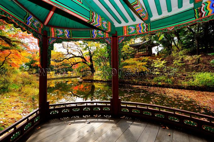Autumn of Changdeokgung Palace's Huwon Garden