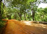 Gyejoksan Mountain Red Clay Trail
