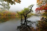 Jusanji Pond