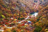 내장산 가을풍경..