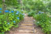 해남 포레스트수목원