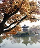 Hyangwonjeong Pavilion in Autumn