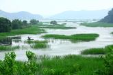 Uponeup Marsh