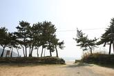 남해군 송정솔바람해변